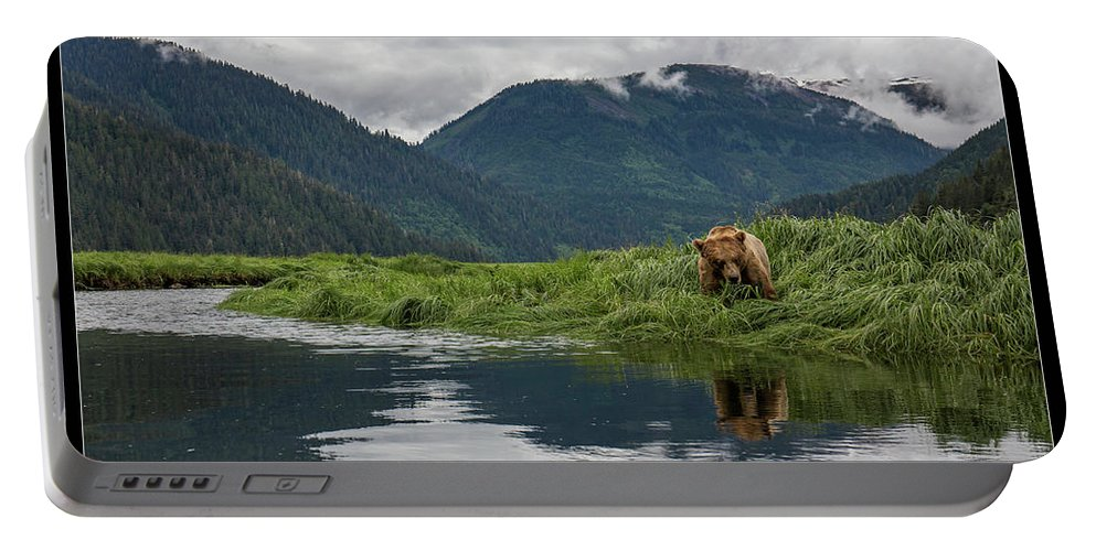 Grizzly Portable Battery Charger featuring the photograph 29 by J and j Imagery