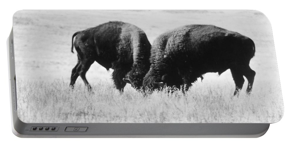 20th Century Portable Battery Charger featuring the photograph American Buffalo by Granger