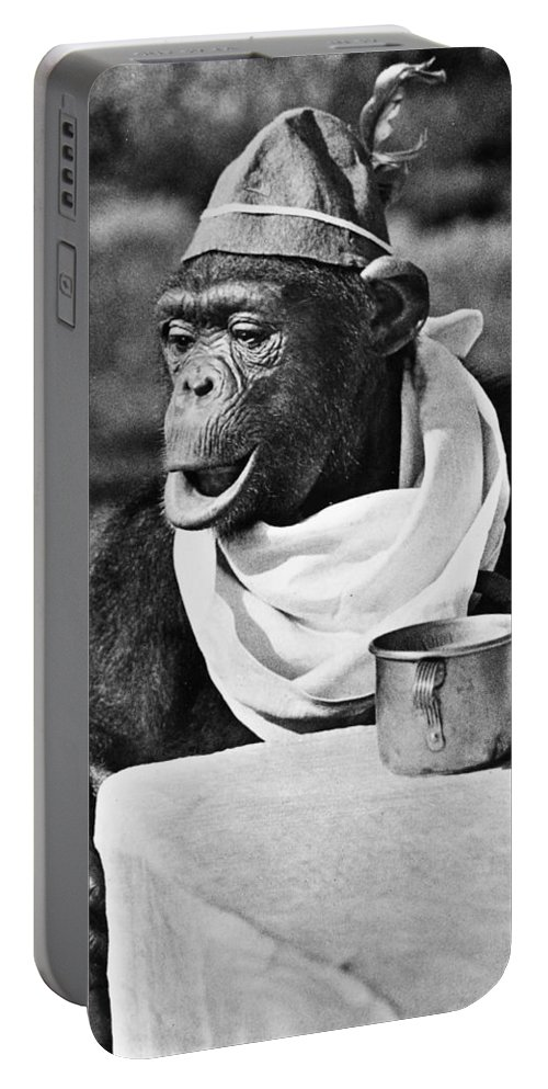 20th Century Portable Battery Charger featuring the photograph Chimpanzee by Granger
