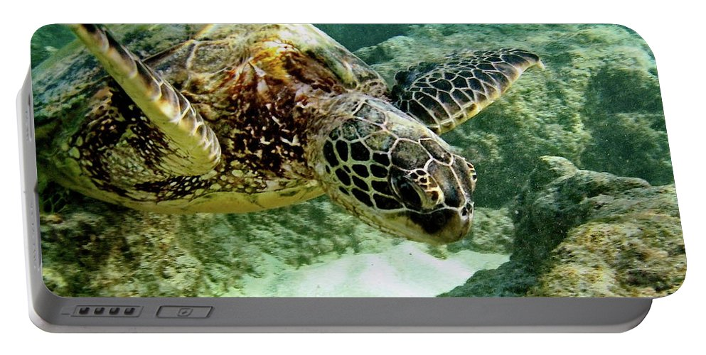 Big Portable Battery Charger featuring the photograph Green Sea Turtle by Michael Peychich