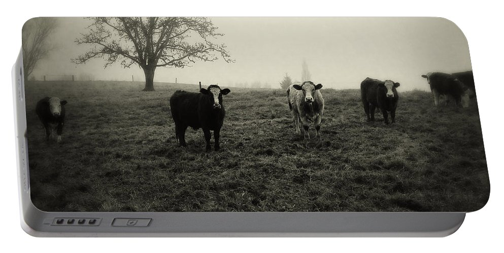 Fog Portable Battery Charger featuring the photograph Livestock by Les Cunliffe