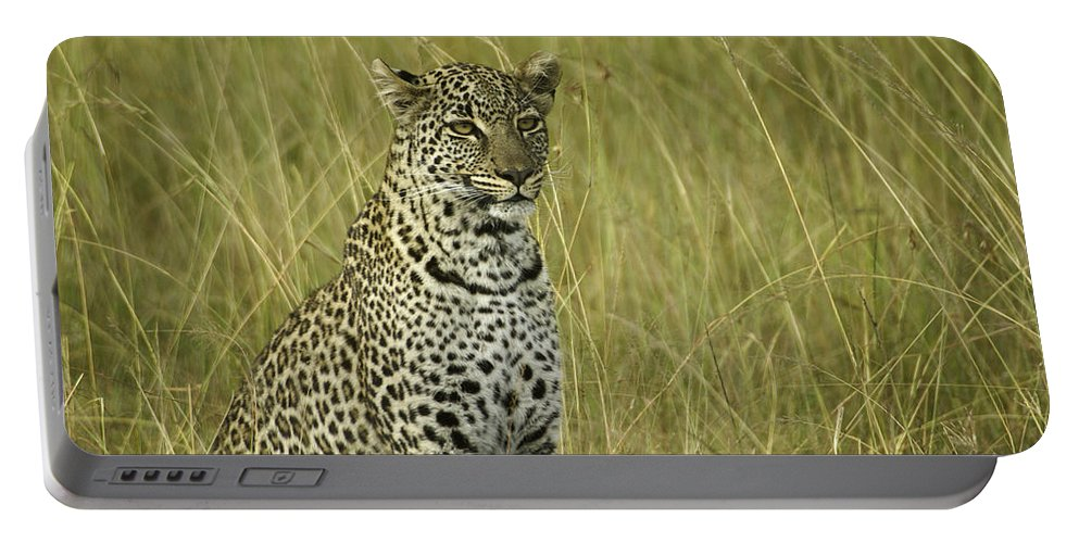 Africa Portable Battery Charger featuring the photograph Lovely Leopard by Michele Burgess
