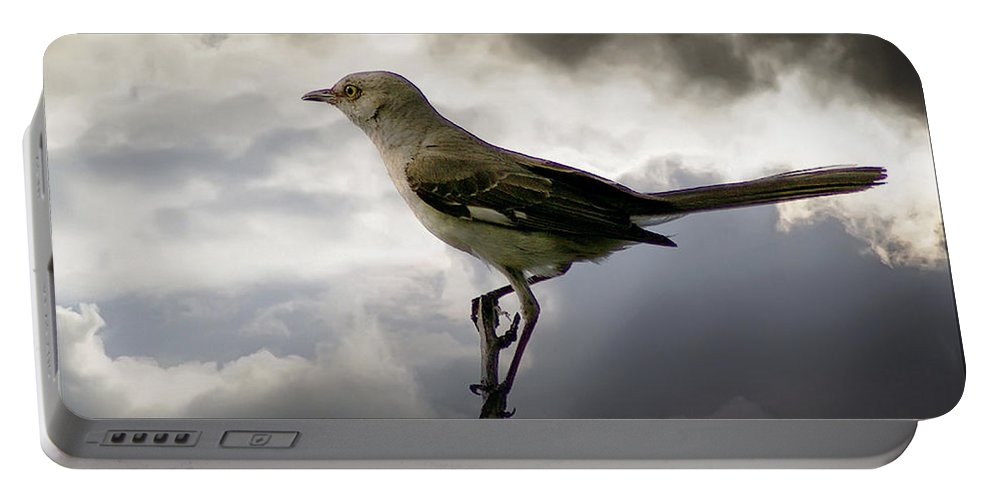 2d Portable Battery Charger featuring the photograph Mockingbird by Brian Wallace