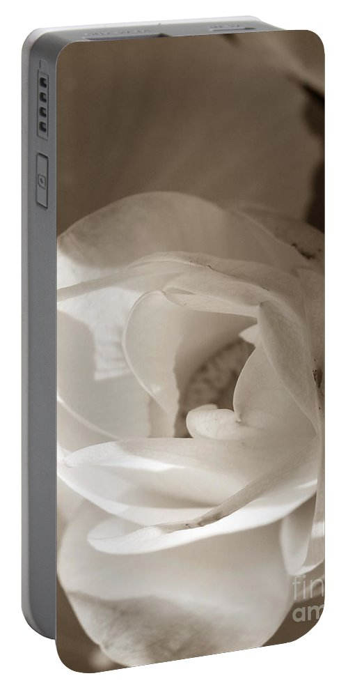 Lotus Portable Battery Charger featuring the photograph Softly by Amanda Barcon