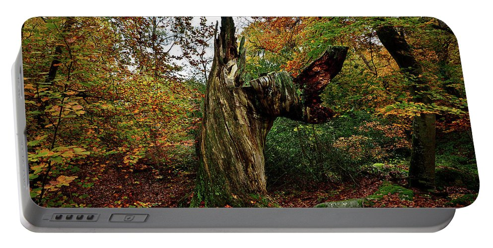 Nature Portable Battery Charger featuring the photograph The Samson by Olivier Blaise