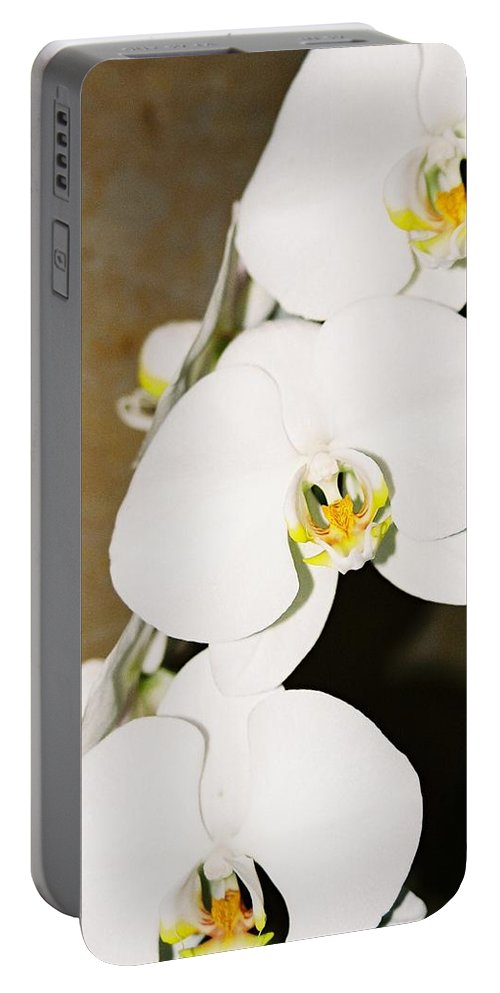 White Orchids Portable Battery Charger featuring the photograph 3 White Orchids by Lauri Novak