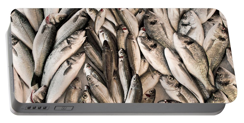 Background Portable Battery Charger featuring the photograph Fresh Fish by Tom Gowanlock