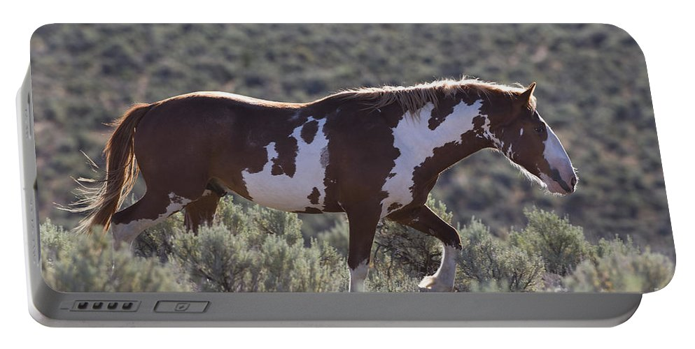 Horse Portable Battery Charger featuring the photograph Mustang Stallion by Jean-Louis Klein & Marie-Luce Hubert