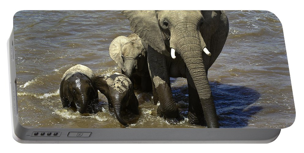 Africa Portable Battery Charger featuring the photograph River Crossing by Michele Burgess