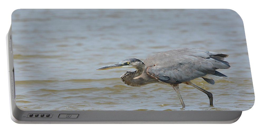 Great Blue Heron Portable Battery Charger featuring the photograph Striking Distance by Fraida Gutovich