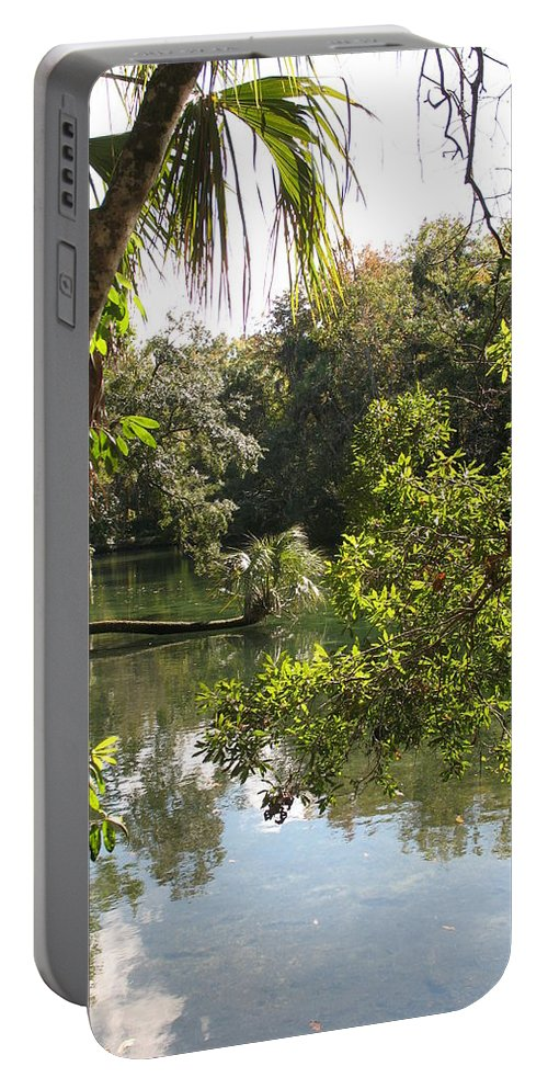 Swamp Portable Battery Charger featuring the photograph Swamp Reflection by Christiane Schulze Art And Photography