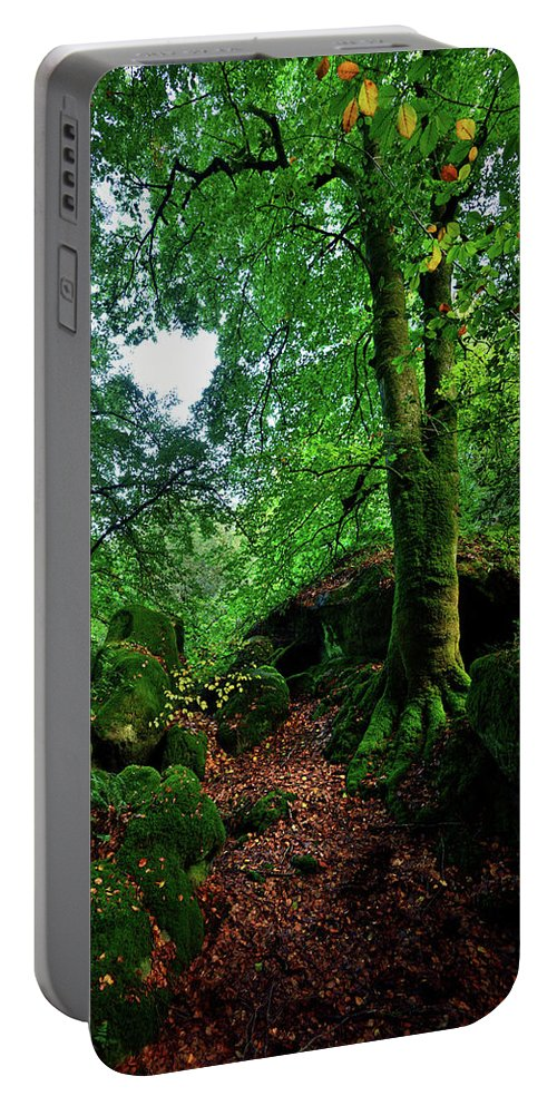 Nature Portable Battery Charger featuring the photograph The Acteon by Olivier Blaise