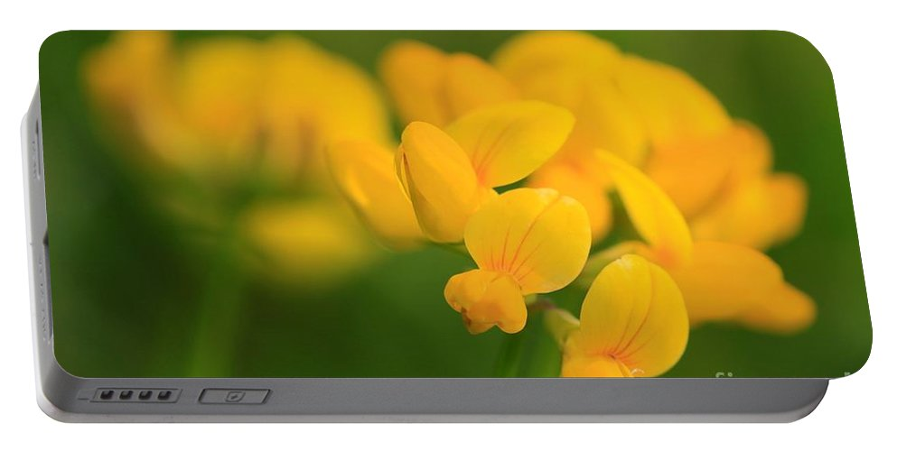 Mccombie Portable Battery Charger featuring the photograph Wildflower Named Birdsfoot Trefoil by J McCombie
