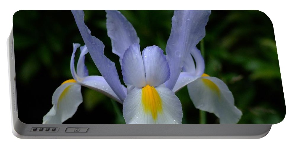 Flower Portable Battery Charger featuring the photograph Flowers by FL collection