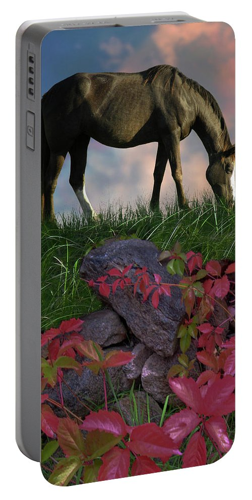 Horse Equine Animal Flora Grass Leaves Rocks Clouds Landscape Color Light Drama Portable Battery Charger featuring the photograph 4594 by Peter Holme III