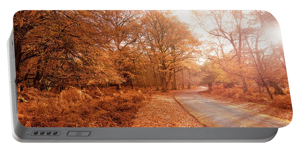 Svetlana Sewell Portable Battery Charger featuring the photograph Autumn by Svetlana Sewell