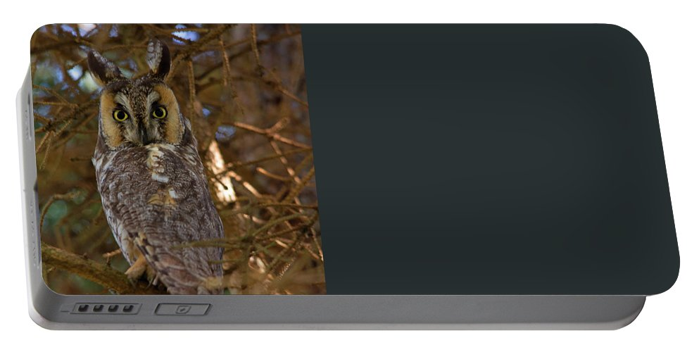 Tahquamenon Falls Portable Battery Charger featuring the photograph Close Up by Linda Kerkau