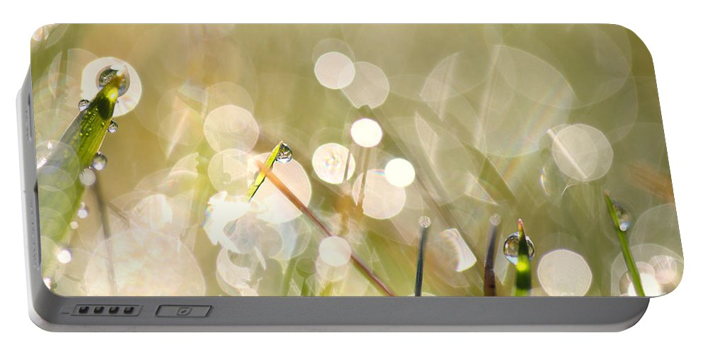Dew Portable Battery Charger featuring the photograph Dew In Grasses by Jana Behr