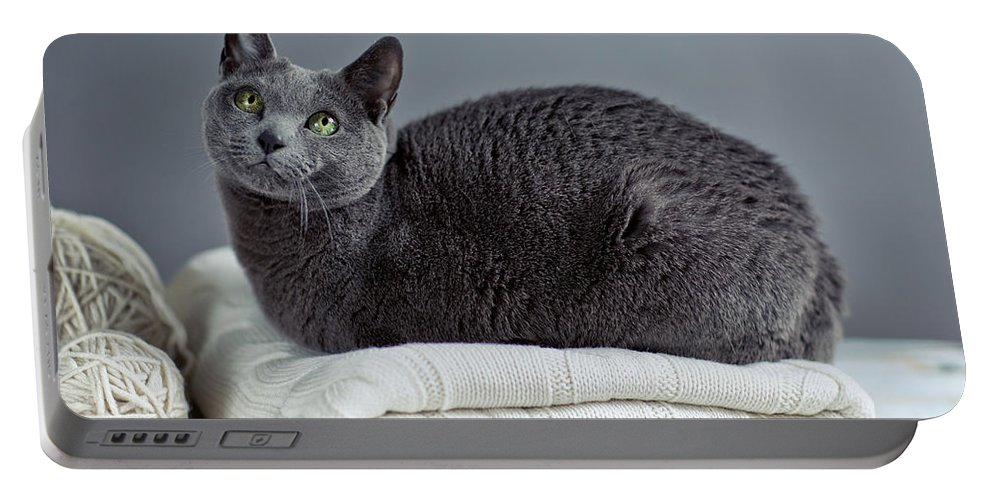 Purebred Portable Battery Charger featuring the photograph Russian Blue by Nailia Schwarz