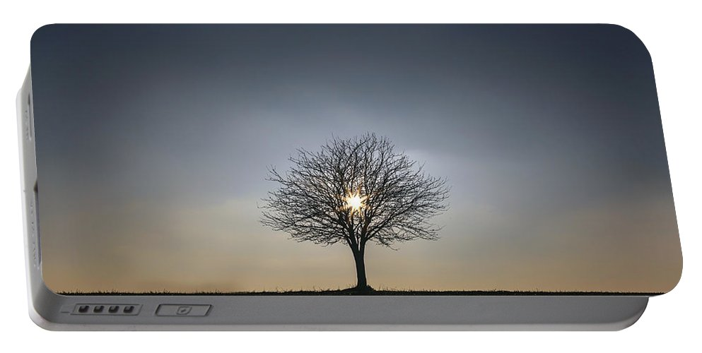 Tree Portable Battery Charger featuring the photograph Winter Tree by Joana Kruse