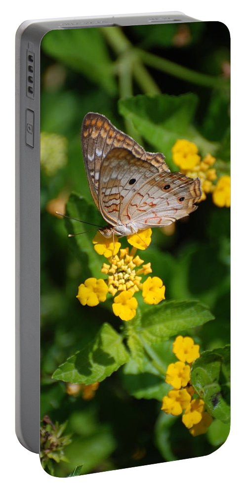 Butterfly Portable Battery Charger featuring the photograph 5 Yellow Flowers And A Buttefly by Rob Hans