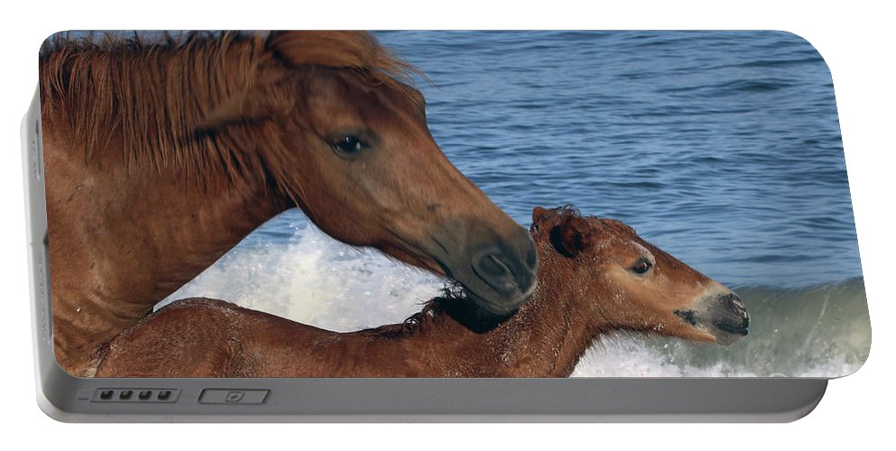 Horses Portable Battery Charger featuring the photograph 556b by Timm Andrews