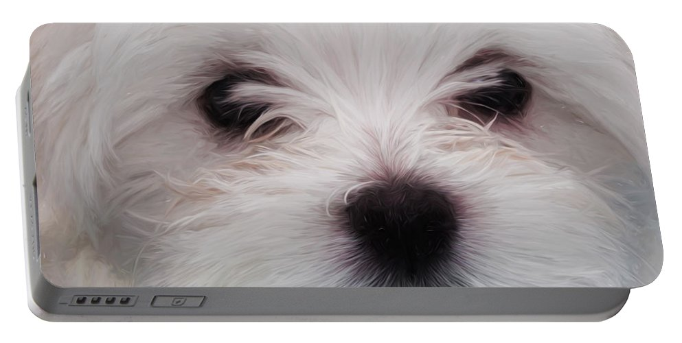 10 Week Portable Battery Charger featuring the painting Maltese Puppy by Shaun Wilkinson