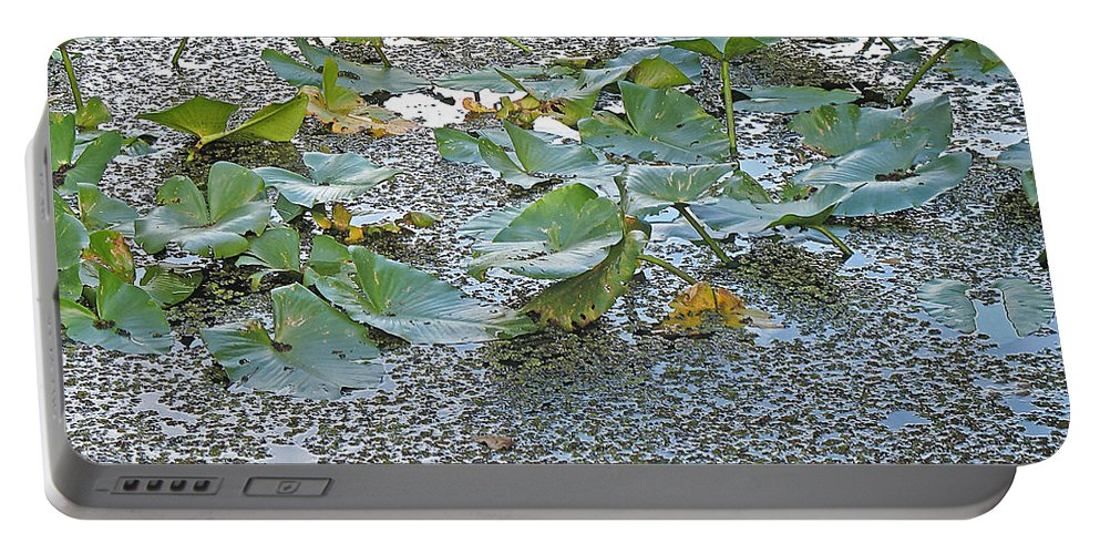 Swamp Portable Battery Charger featuring the photograph 6 Mile Swamp by Kenneth Albin