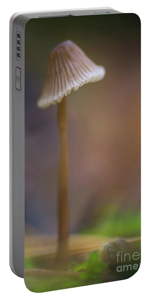 Bokeh Portable Battery Charger featuring the photograph Mushrooms by Brothers Beerens