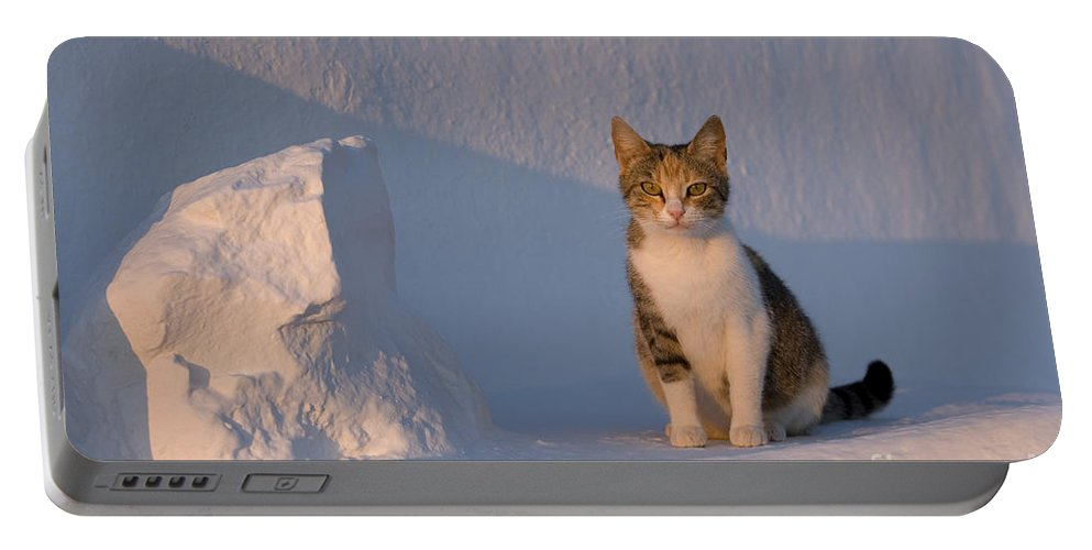 Cat Portable Battery Charger featuring the photograph Cat On A Greek Island by Jean-Louis Klein & Marie-Luce Hubert