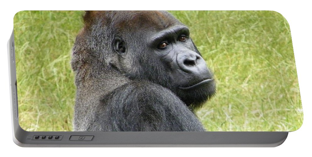 Gorilla Portable Battery Charger featuring the photograph Gorilla by FL collection