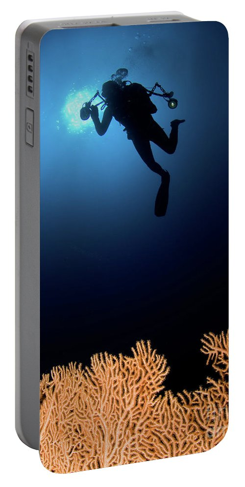 Underwater Portable Battery Charger featuring the photograph Underwater Photography by Hagai Nativ