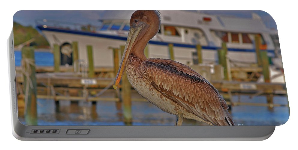 Brown Pelican Portable Battery Charger featuring the photograph 8- Brown Pelican by Joseph Keane