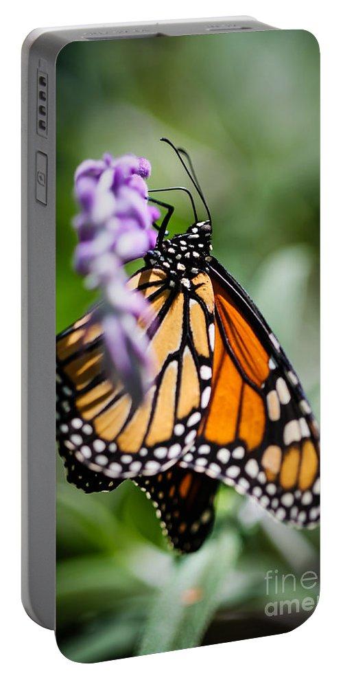 Monarch Portable Battery Charger featuring the photograph Monarch Danaus Plexippus by Henrik Lehnerer