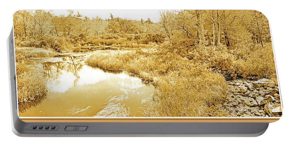 Color Portable Battery Charger featuring the photograph Stream In Autumn, Pocono Mountains, Pennsylvania by A Gurmankin