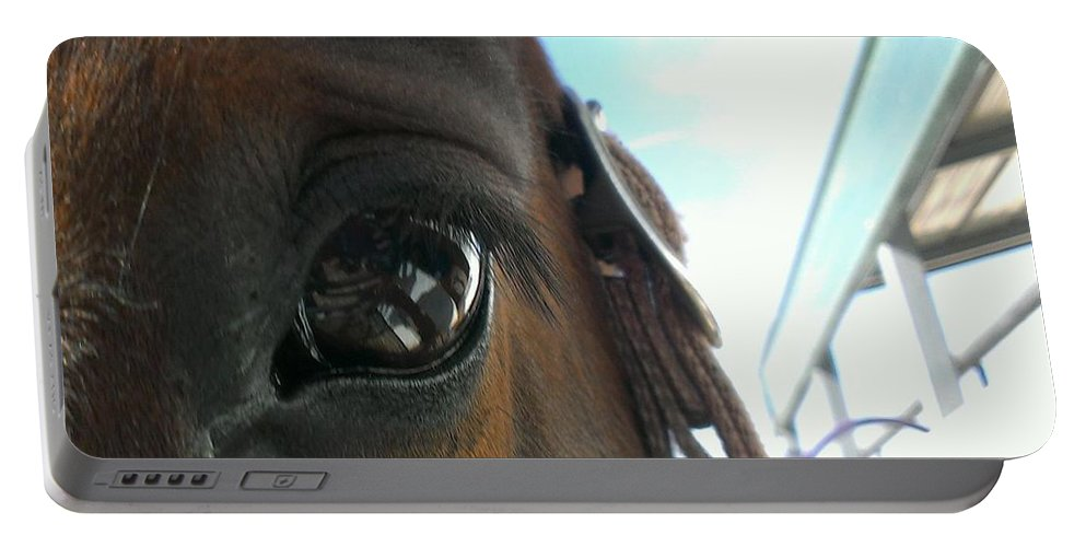 Horses Portable Battery Charger featuring the photograph A Bay View by LKB Art and Photography