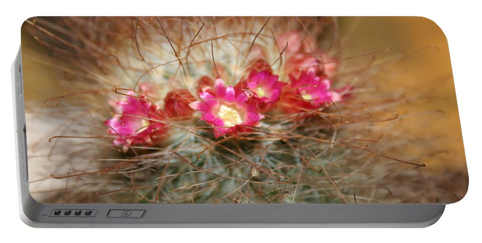 Flowers Nature Portable Battery Charger featuring the photograph A Beautiful Blur by Linda Sannuti