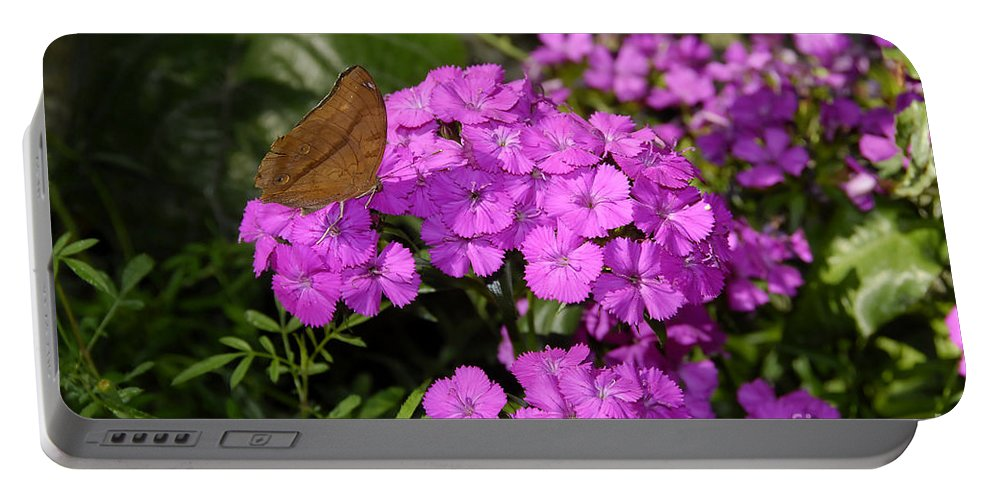 Butterfly Portable Battery Charger featuring the photograph A Beautiful Landing by David Lee Thompson