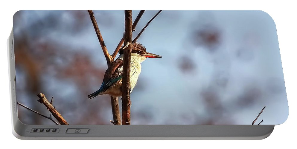 Brown-hooded Kingfisher Portable Battery Charger featuring the photograph A Brown-hooded Kingfisher by Kay Brewer
