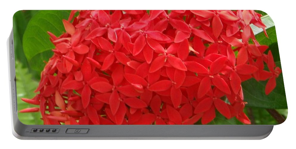 Mary Deal Portable Battery Charger featuring the photograph A Crown Of Ixora by Mary Deal