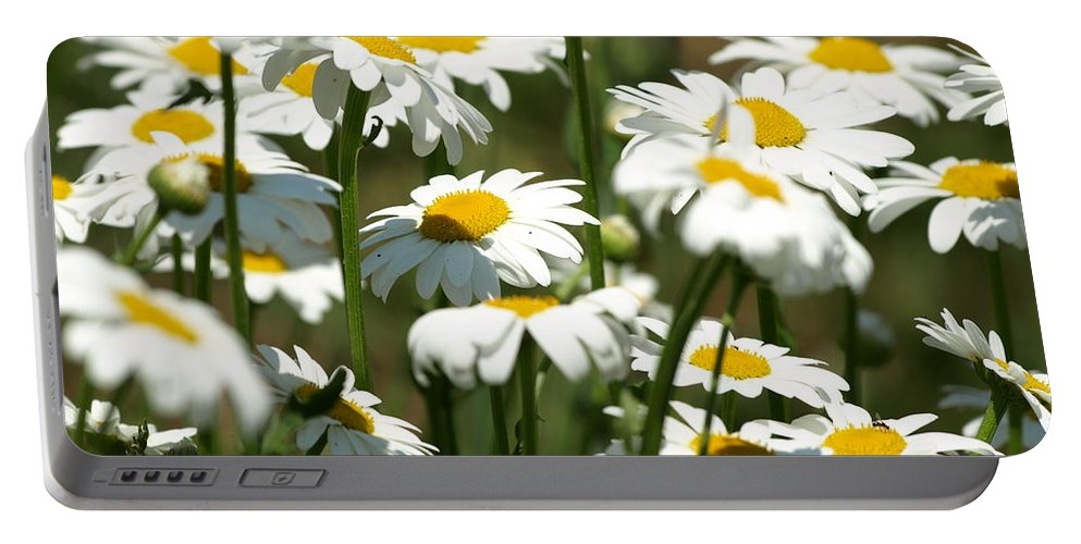 Flowers Portable Battery Charger featuring the photograph A Daisy A Day by DeeLon Merritt