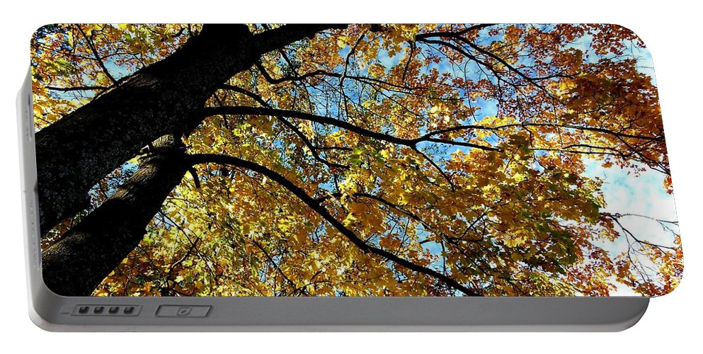 Autumn Portable Battery Charger featuring the photograph A Falling Maple Leaf by Will Borden