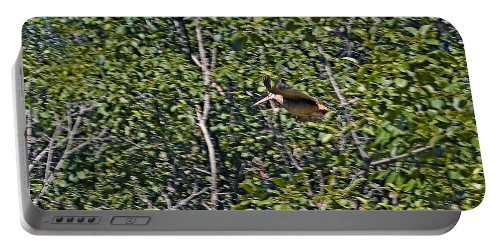 American Woodcock Portable Battery Charger featuring the photograph A Far Away Memory by Asbed Iskedjian