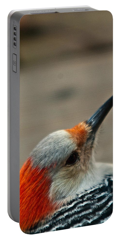 Redhead Portable Battery Charger featuring the photograph A Firey Redhead by Douglas Barnett