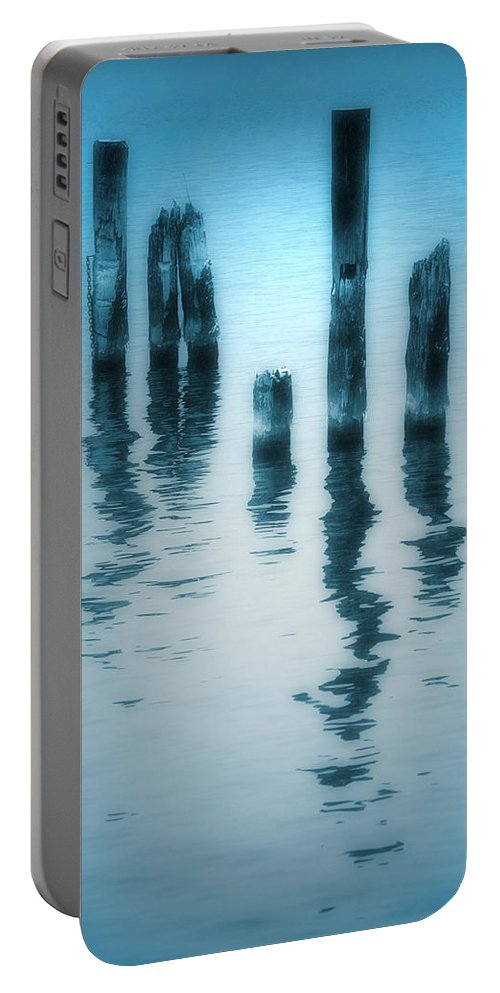 Blue Portable Battery Charger featuring the photograph A Fleeting Blue by Tara Turner