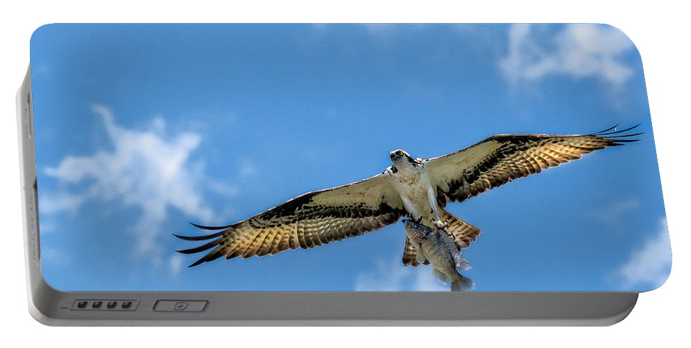 Avian Portable Battery Charger featuring the photograph A Good Day Fishing by Christopher Holmes