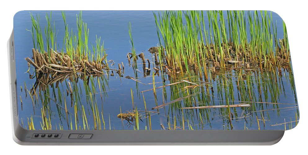 Spring Portable Battery Charger featuring the photograph A Greening Marshland by Ann Horn