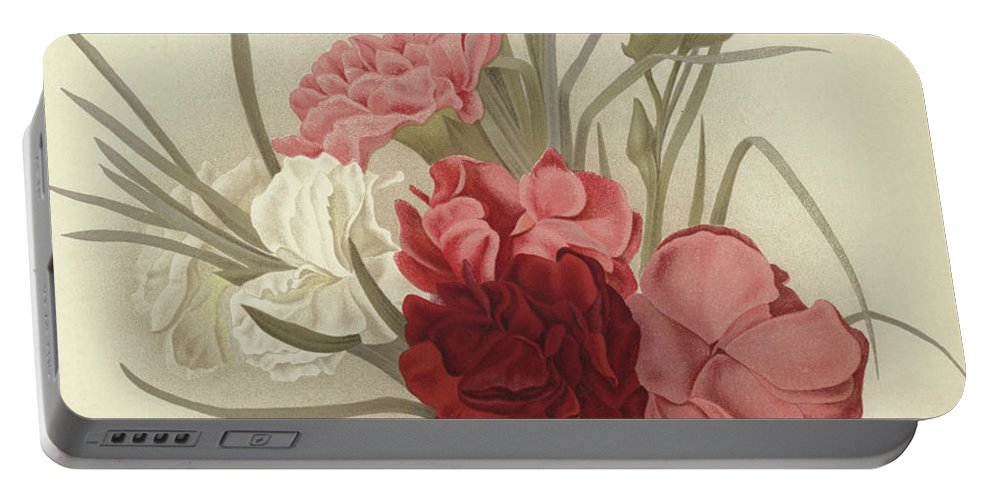 Carnation Portable Battery Charger featuring the painting A Group Of Clove Carnations by English School