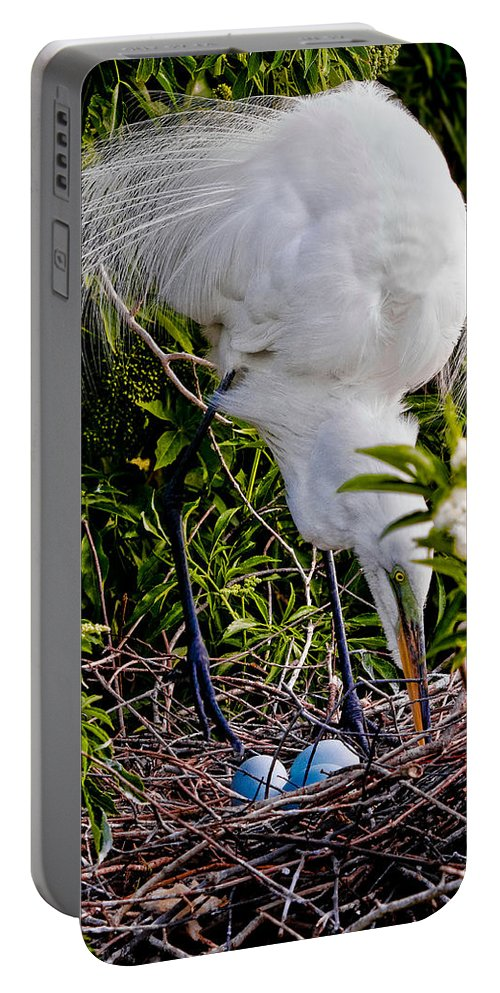 Art Portable Battery Charger featuring the photograph A Little Housekeeping by Christopher Holmes