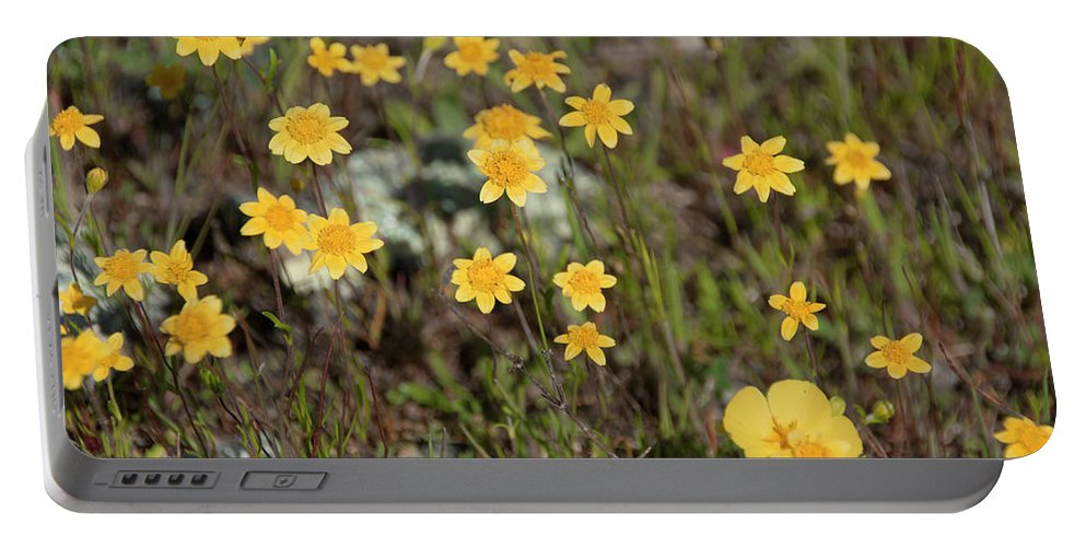 Nature Portable Battery Charger featuring the photograph A Little Yellow by Susan Wright